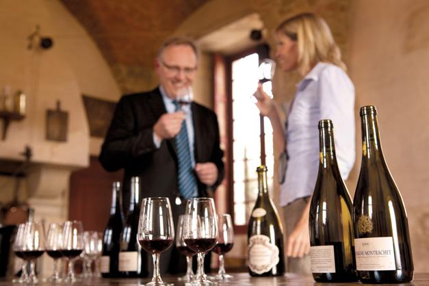 Degustação de vinho - Arles - Provença