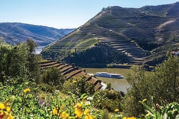 Queen Isabel: Vale do rio Douro